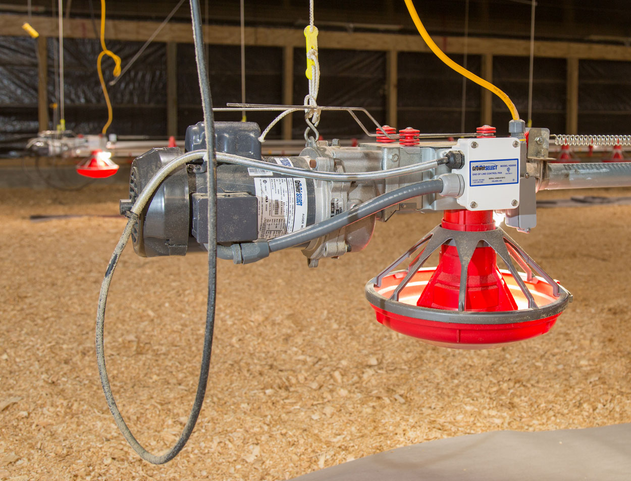 GrowerSELECT® Drive Units for poultry feed lines are available in multiple motor sizes to handle various feed system lengths. 1/2 HP (HS9021D1-P) GrowerSELECT drive unit shown installed with HS8500 End Control Pan with optional control pan light kit.