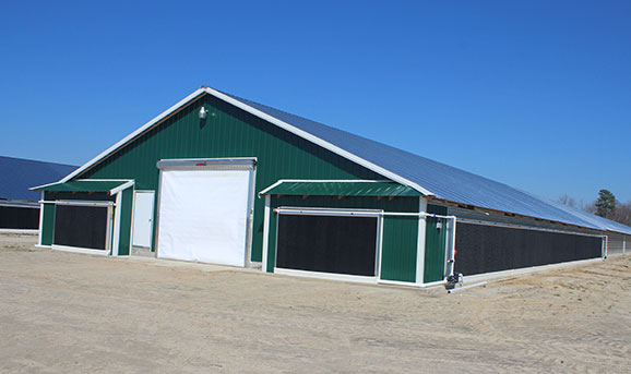 Hog Slat EVAP cool cell systems are adaptable to meet the cooling needs of today's large poultry and swine production barns.
