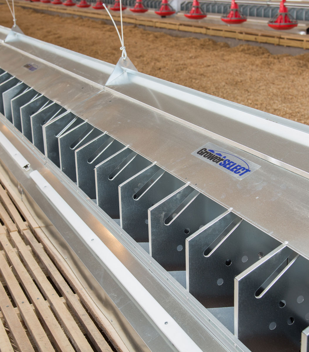 GrowerSELECT chicken nests installed on a new construction breeder chicken farm in North Carolina.